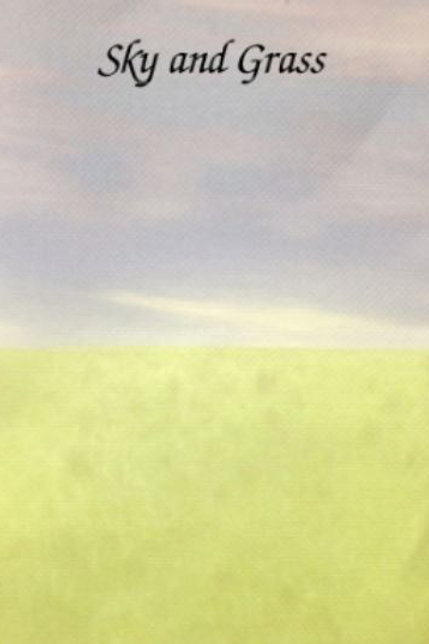 Sky and Grass | Aida | Silkweaver Fabrics