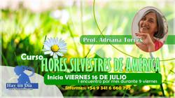 FSA 16 DE JULIO