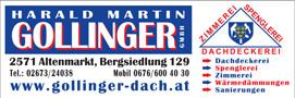 Gollinger1.jpg