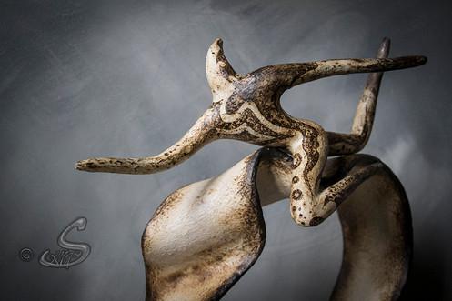 La chevauchée des Astroïdes
