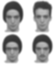 4_faces.png