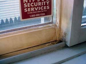 window-inspections
