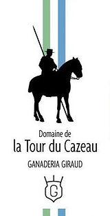 """Résultat de recherche d'images pour """"la tour du cazeau logo"""""""