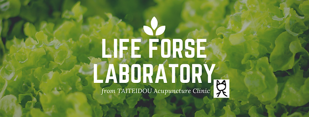 LIfe forse laboratory (1).png