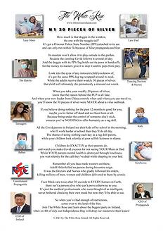 The White Rose Newsletter Issue 2 (MASTE