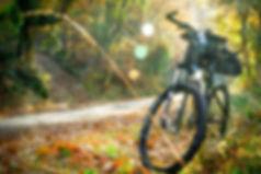 cycling-2846201_1920.jpg