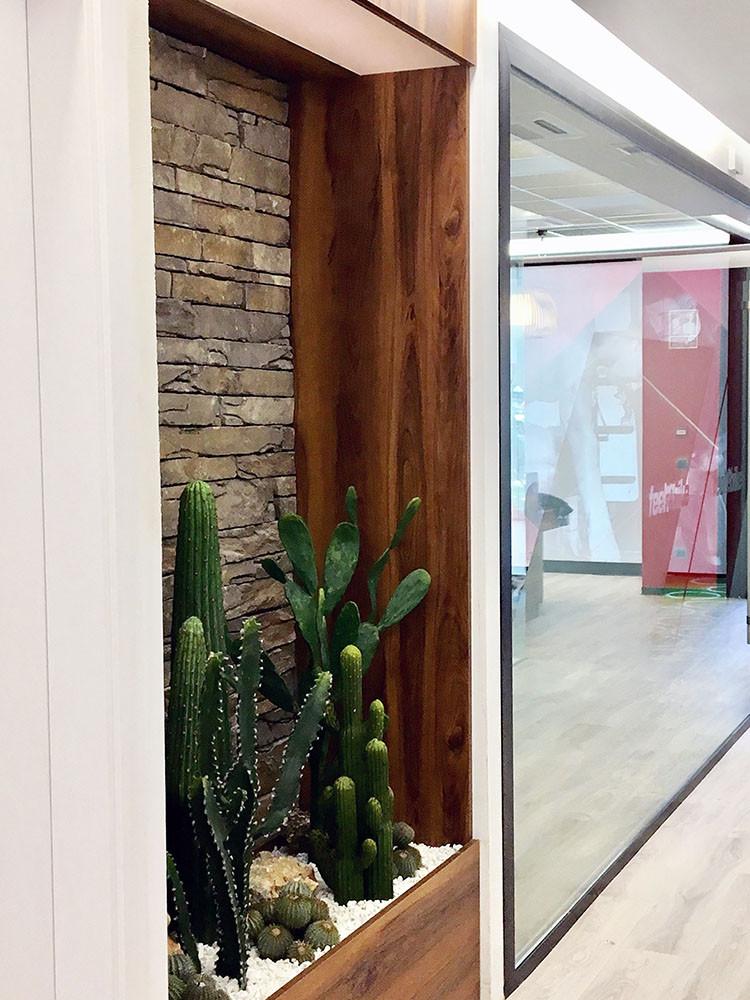 decoración con plantas decorativas oficina
