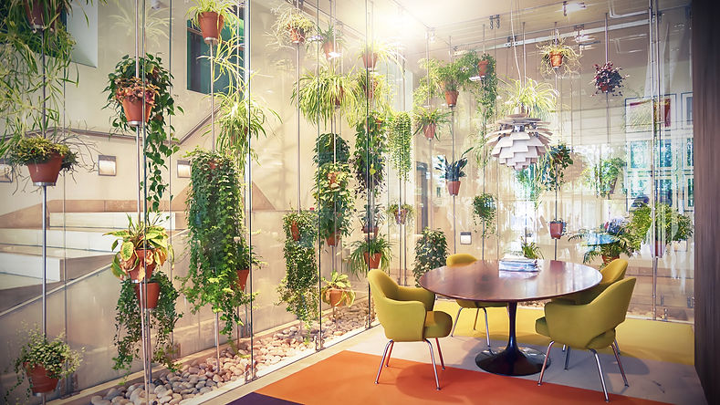 Plant%20filled%20contemporary%20office%2