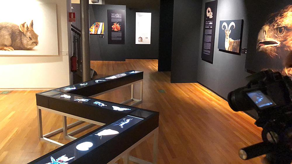 montaje de exposición PhotoArk