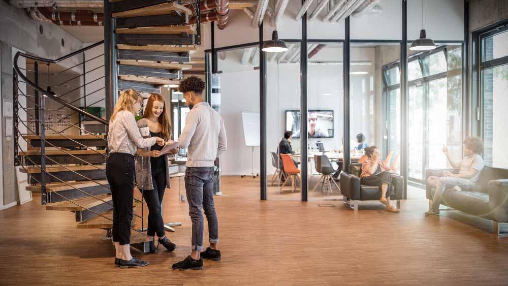 Oficina con espacio abierto, zona de reunión y zona de descanso.