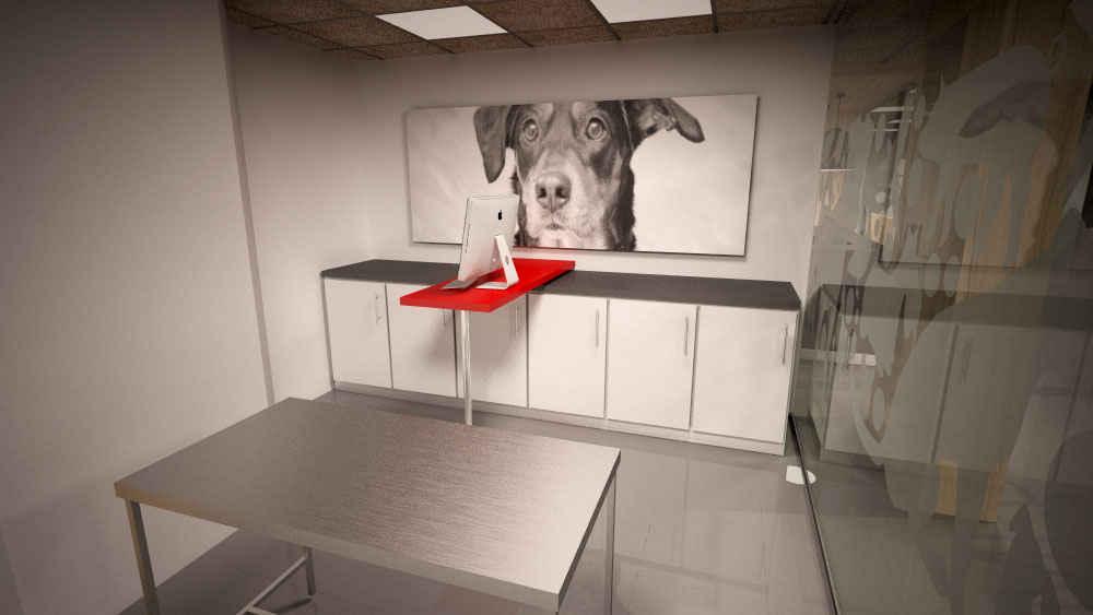 Reforma de clínica veterinaria en Madrid