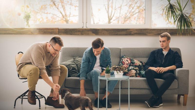 Reforma de oficina con espacio de descanso hogareño