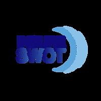 InsureSWOT Logo.png