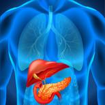 Hepato-Biliary Disease