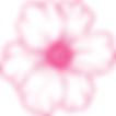 vulva flower.png