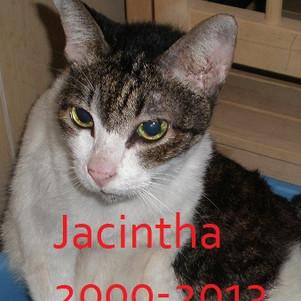 Jacintha Jan 2010