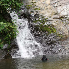 01 17Dec2018 Waterfalls.jpg