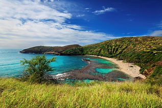 hawaii-globe-treks-bus-tours-2.jpg