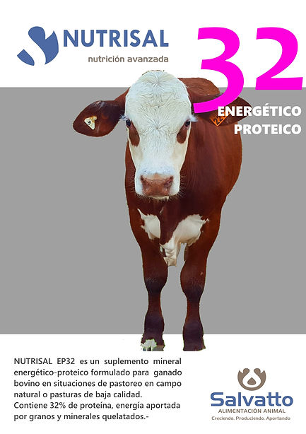Proyecto_EP32A5.jpg
