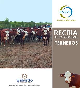 Terneros Recria AC.png