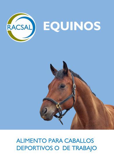 EQUINOS.jpg