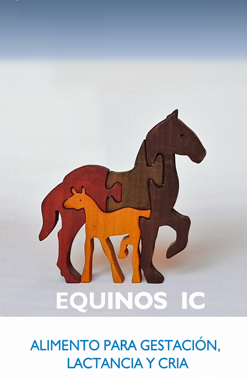 Equinos IC2.png