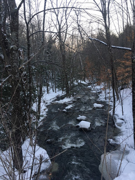 Fall into Winter Path.jpg