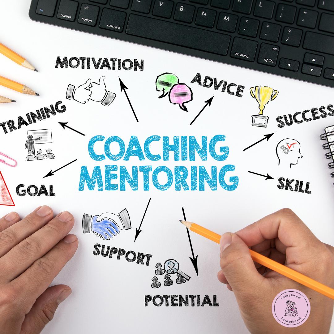 Let's Talk session - mentoring
