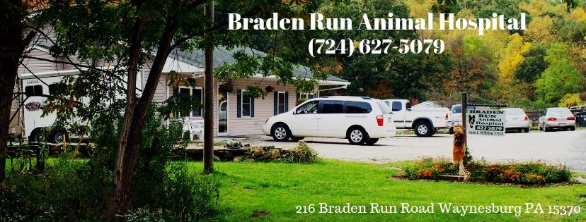 Braden Run.jpg