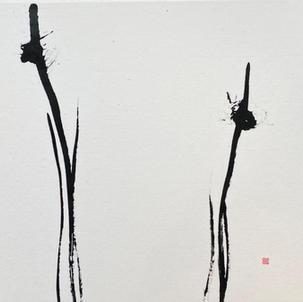 ROOM 202 「林」