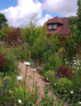 Garden design Edinburgh Scotland. Cottage garden design style with wildlife friendly planting. Wildlife garden design..