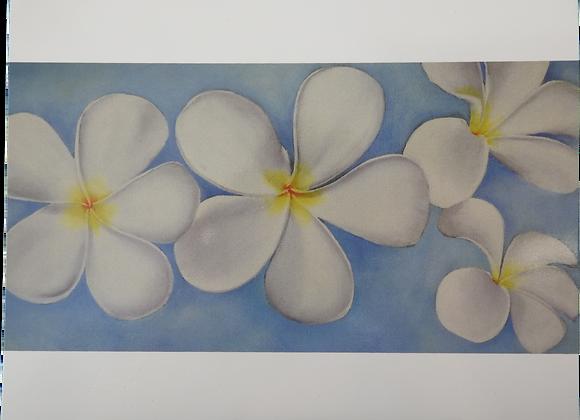 Frangipanni Blue - Blank Card