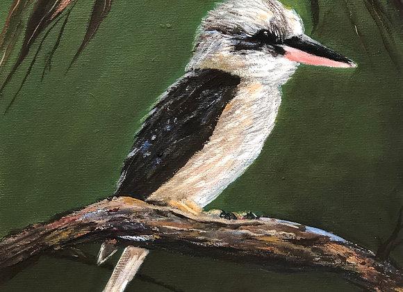 Kookaburra and gum leaves blank card