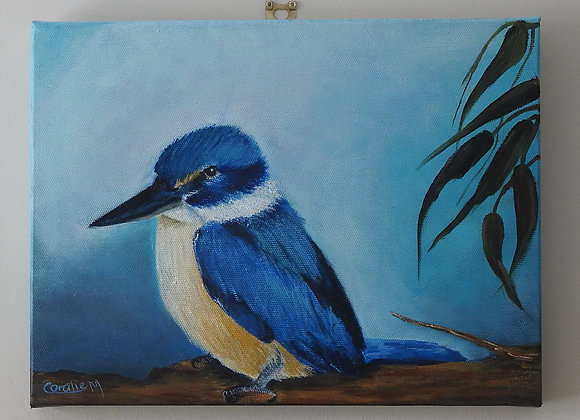 Australian Kingfisher