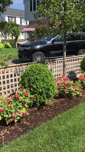 Lattice Fencing