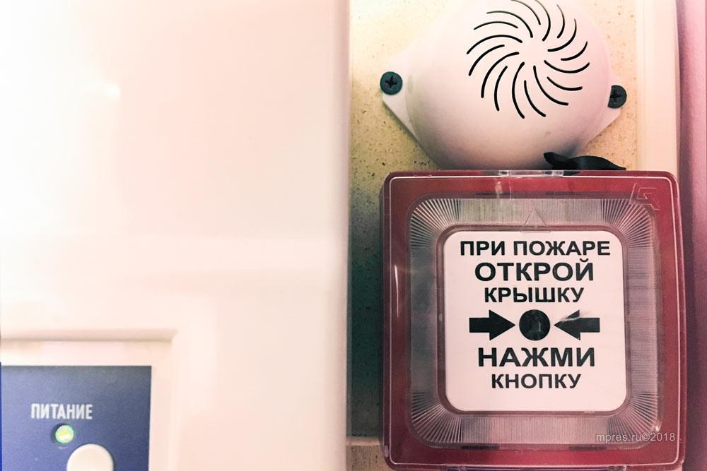Фото: Алеся Кайдалова/mpres.ru