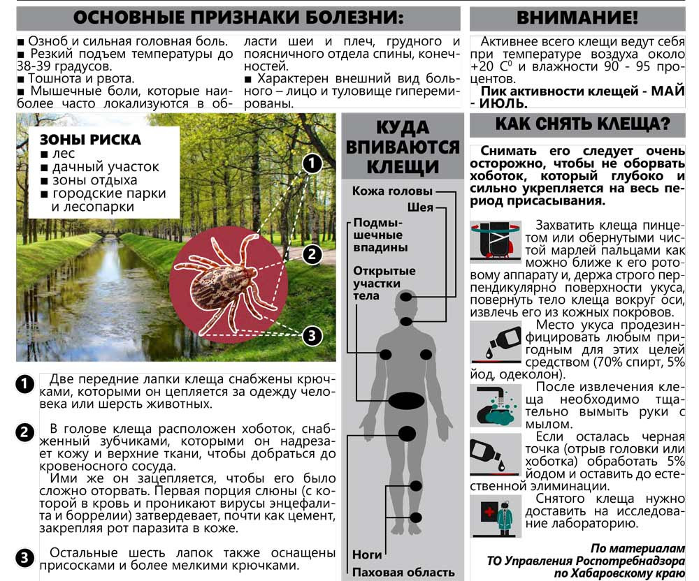 Инфографика: Алексей Милюхин/mpres.ru