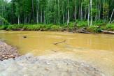 В Хабаровском крае золотодобывающее предприятие привлечено к административной ответственности