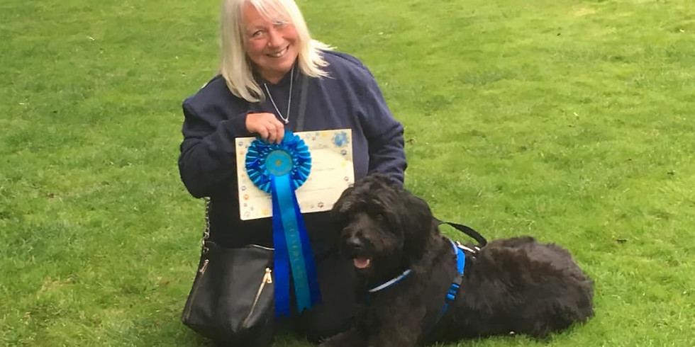 Clever Canine Group Class