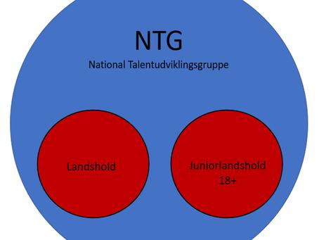 National Talentudviklingsgruppe NTG