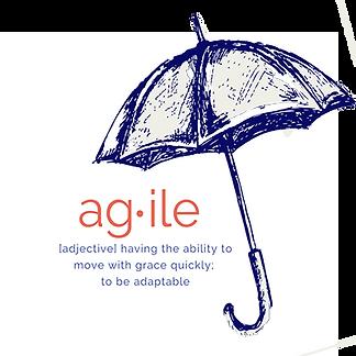 agile and umbrella.png