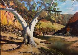 Ormiston Gorge - SOLD $2800