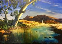 In the Flinders - SOLD $3000