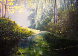Narracan Creek - 1200 x 1000.jpg