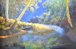 Narracan Creek - SOLD $5000