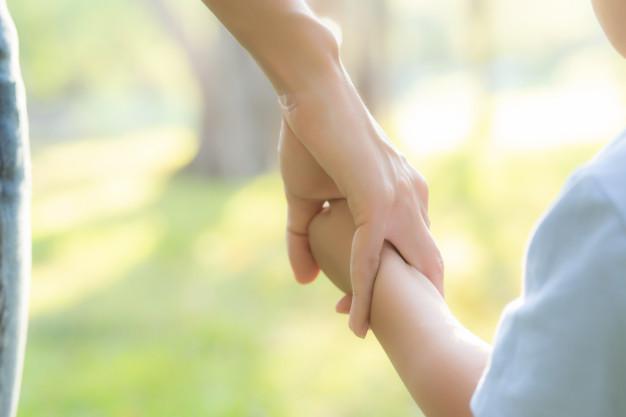 familia seguros vida sefi