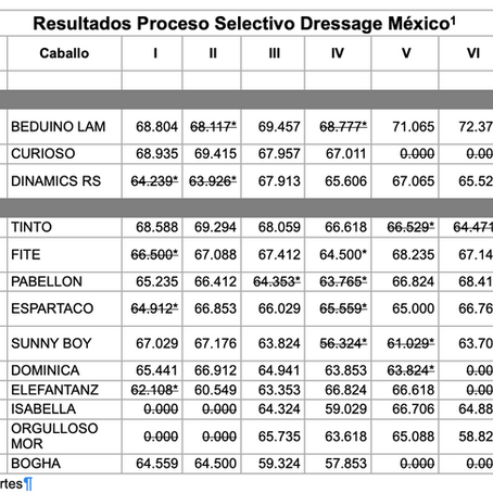 Selectivos Rumbo a Lima 2019