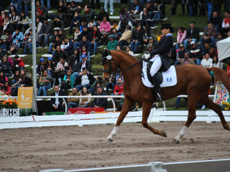 Equestrian sports start at the XXIIND  Central American And Caribbean Games Veracruz 2014