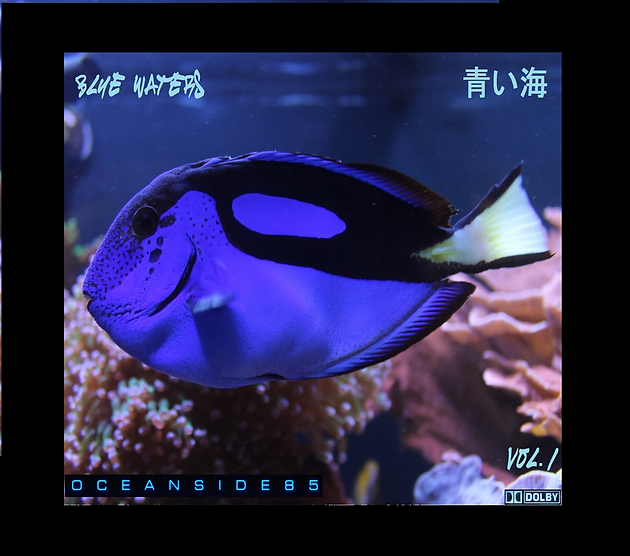Blue Waters Vol 1 out now #vaporwave #synthwave #newmusic
