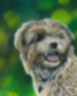 Dog (markets)1.jpg